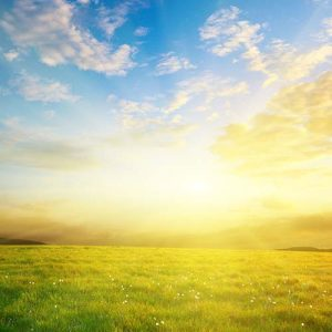 Sonnenlandschaft.